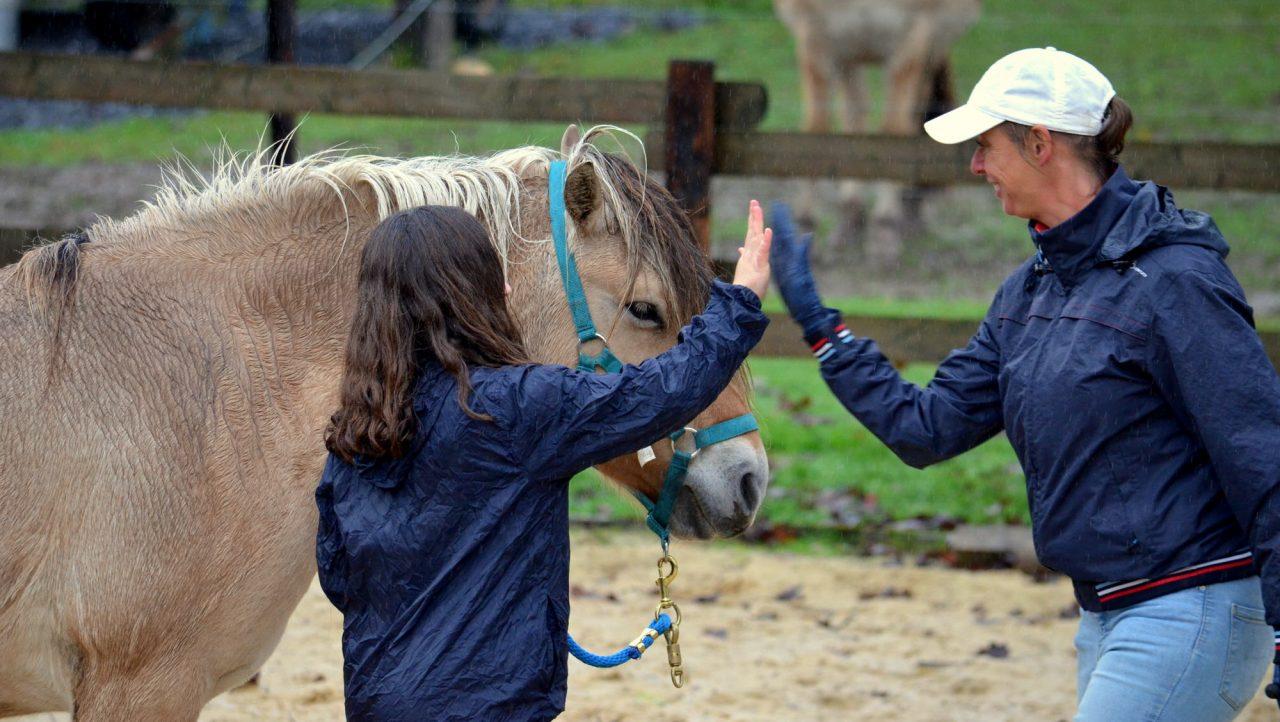 Immersion d'un jour avec votre cheval